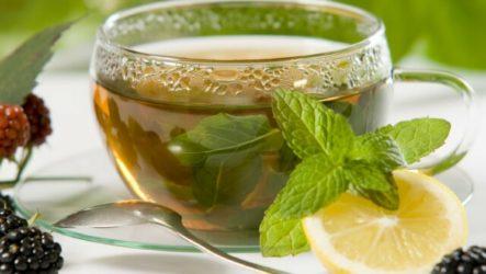 Чем полезен чай с мятой: любимый успокаивающий напиток