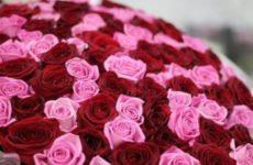 Что делать чтобы розы долго стояли в воде