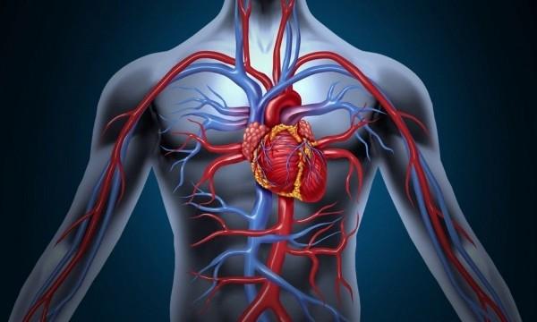 Болит грудная клетка - проблемы с сердцем