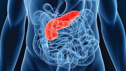 Болит поджелудочная железа: симптомы, лечение в домашних условиях