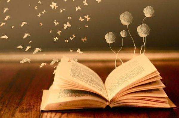 Читаем книгу