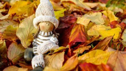 6 советов, как укрепить иммунитет осенью